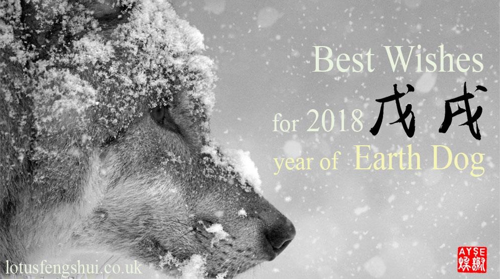 2018 Earth Dog year